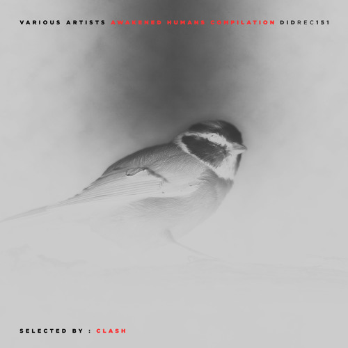 Scouts In Bondage - Forever Fusion (D.A.V.E The Drummer Remix) [DIDREC151]