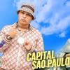 MC Ryan SP - Capital São Paulo (DJ Peter 2K30)