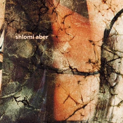 Figure 98 - Shlomi Aber - Whistler (preview)