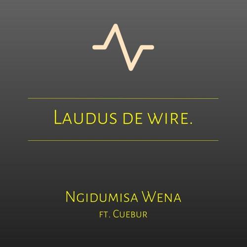 Ngidumisa Wena - Rmx ft. Cuebur