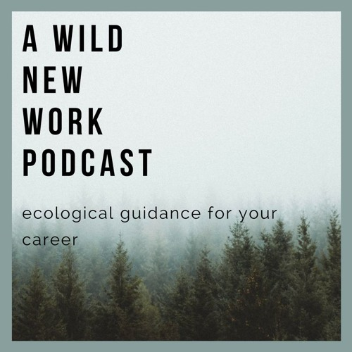 1. A Wild New Work Podcast: July