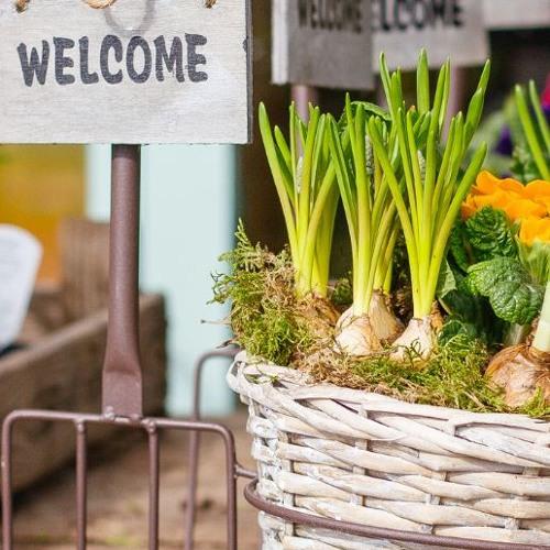 Empowering Community Through Urban Farming - EcoJustice Radio