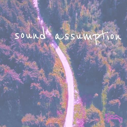 Sound Assumption