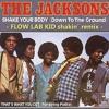 Jackson 5 - Shake Your Body Down - to the ground -(Flow Lab Kid shakin´ remix)