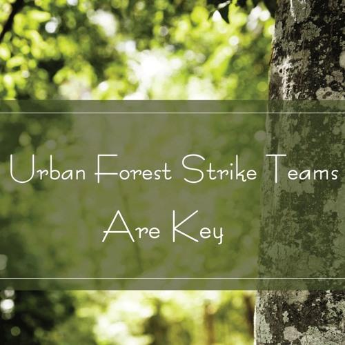Urban Forest Strike Teams Are Key