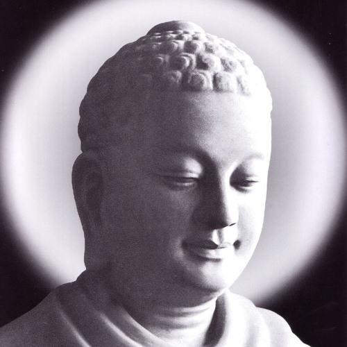 Tương Ưng Nhân Duyên - Phẩm Cây 04 - Cây Lớn - Sư Toại Khanh