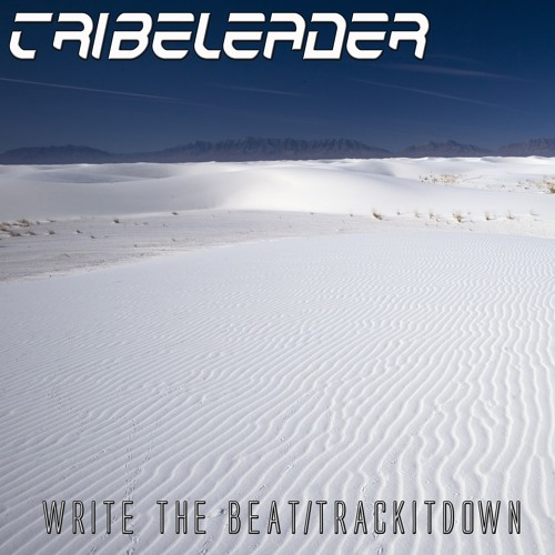 Tribeleader - Write The Beat