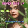 Never give up on me