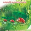 Pesum Idhayam -  H.F Rizna - Srilanka - London Tamil Radio 23.05.2012