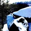 Free Flowing Nirvana - Pagliaro (Dubplate)(WIP)