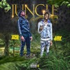 Jungle ft. JayDaYoungan