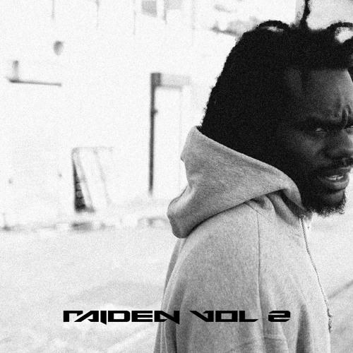 Raiden Vol. 2
