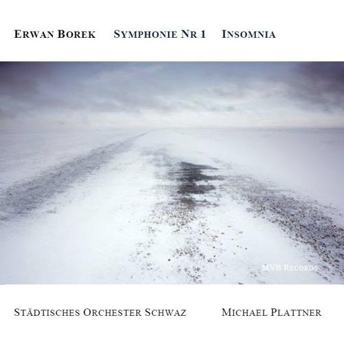 Erwan Borek Symphonie Nr 1 Insomnia