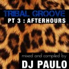 DJ PAULO - TRIBAL GROOVE Pt 3 (AFTERHOURS) Summer 2018