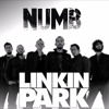NUMB - LINKIN PARK - FEMALE (cover)