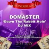 DOMASTER - Down The Rabbit Hole