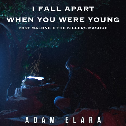 I Fall When You Were Young (Post Malone/The Killers Mashup)