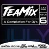 TeaMix Vol. 6 (DJ RooBen | DJ Sagiv Alfasi | Dudu A'S | Roe Hyams | Doron Shitrit)