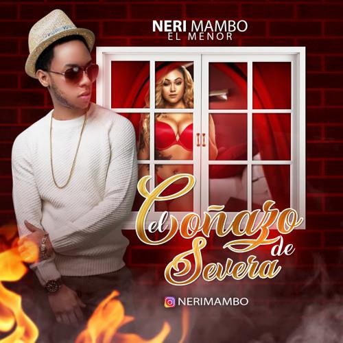 Nerimambo - El Coñazo de Severa @CongueroRD @JoseMambo