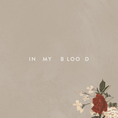 In My Blood / Shawn Mendes