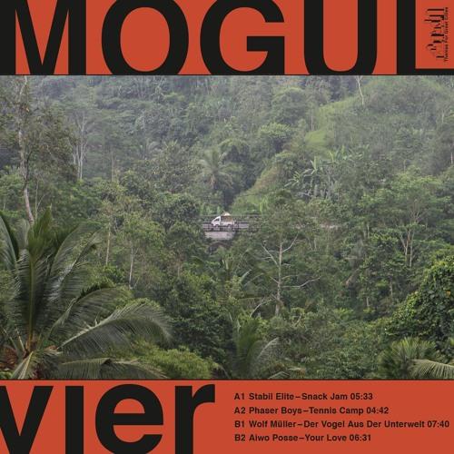 "TFGC015 - Mogul 4 Compilation 12"""