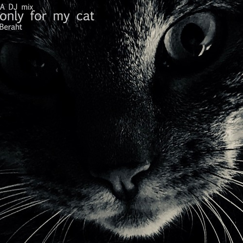 Beraht - A DJ Mix Only For My Cat