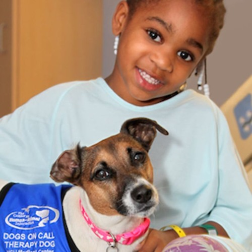 Dogs helping people: In families, hospitals, colleges, and at work