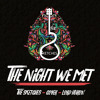 The Night We Met - Cover (Lord Huron)