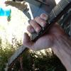 Hooch acoustic melvins!
