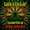 Dubadelic  (**FREE MP3 DOWNLOAD** - for a limited time!)