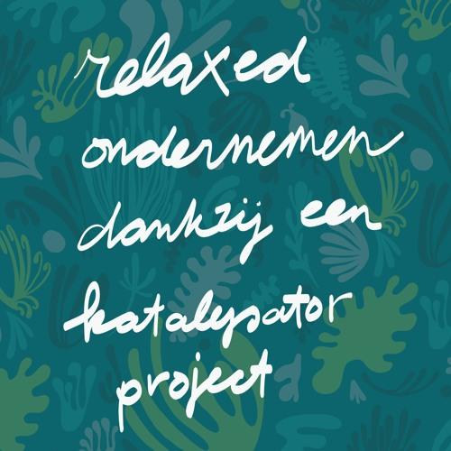 #11 Relaxed ondernemen dankzij je katalysator project