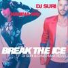 Dj Suri Feat Karina Kay - Break The Ice (Dj Suri & David Max Remix) *FREE DOWNLOAD*