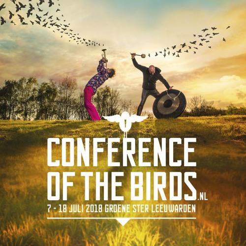 Conference of the Birds - Inleiding voor Onderweg