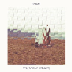 Stay For Me (Dayspired Remix)