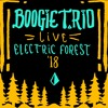 BOOGIE T.RIO - Live at Electric Forest '18