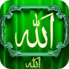 HAJJ 2014 ARAFAT DAY Urdu Bayan And Dua  Peer Zulfiqar Ahmad