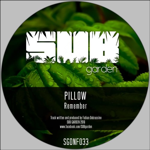 Pillow - Remember (SGDNF033) [clip] - OUT NOW on BANDCAMP (free