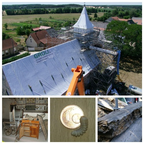 Kirche 1, Holzwurm 0 - Dorfkirche Berge hat Holzschädlinge bekämpft