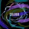 MNEK - Colour ft. Hailee Steinfeld (Aeekay Edit).mp3