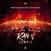 Ran-D - Zombie (Gammer Flip Vs Pure 100% Remake)