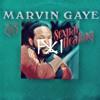 Marvin Gaye - Sexual Healing (FLiX REMiX)