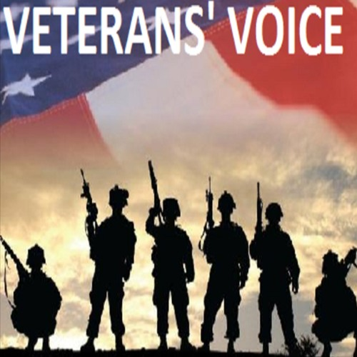 VETERANS VOICE 7 - 5-18 - -RALPH GALATI - MEGHAN'S FOUNDATION - -VETS CENTER