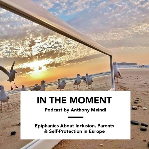 Epiphanies About Inclusion, Parents & Self-Protection in Europe