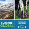 Ambiente Global - Buenas Practicas En Áreas Protegidas