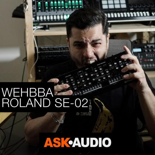 Synth Stories 18 - Wehbba & Roland SE-02