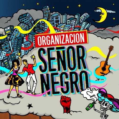 Organización SrNegro