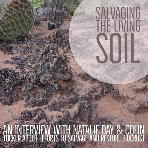 Salvaging the living soil