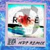 Jonas Blue - Rise (feat. Jack&Jack) NdP REMIX