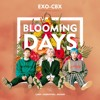 EXO - CBX(첸백시) - 花요일(Blooming Day) COVER.mp3