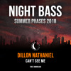 Dillon Nathaniel - Can't See Me [Free Download]